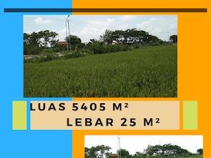 Jual Murah Tanah Strategis Kawasan Kota Kudus Luas 5405 m²