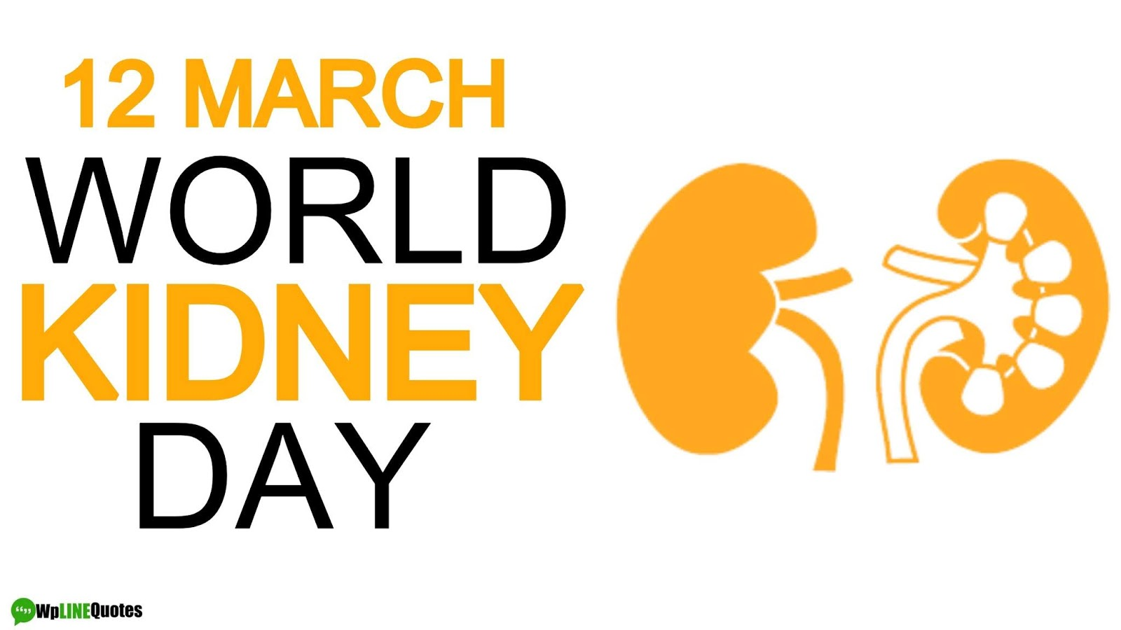 World Kidney Day Quotes, Sayings, Slogans, Poster, Theme