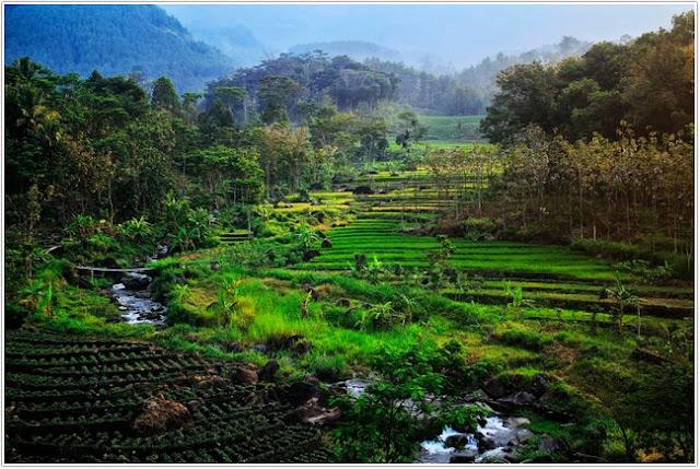 Desa Wisata Ngrayudan;10 Top Destinasi Wisata Ngawi;