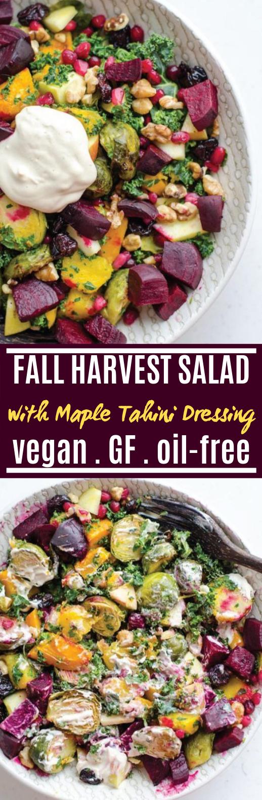 Fall Harvest Salad with Maple Tahini Dressing #healthy #salad