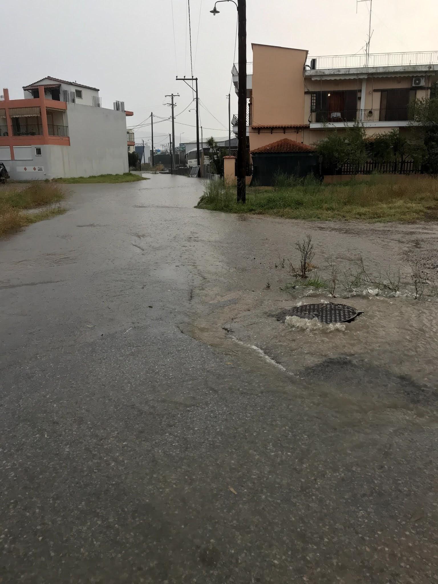 Ξεκίνησαν τα έντονα φαινόμενα του ΙΑΝΟΥ στην Εύβοια. Από τις 4,30 τα ξημερώματα βρέχει κατά διαστήματα στον Δήμο Χαλκιδέων.