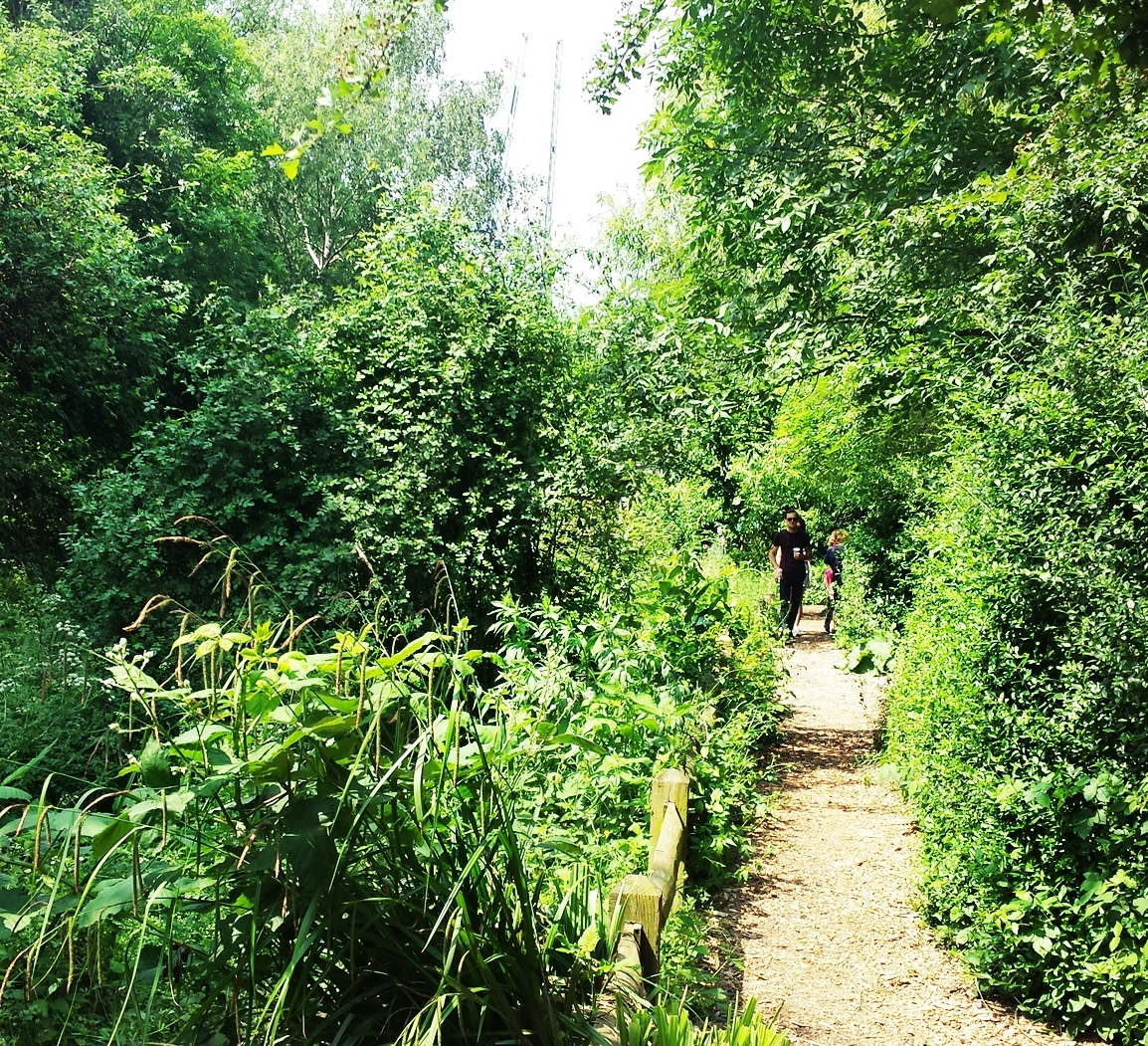 camley park