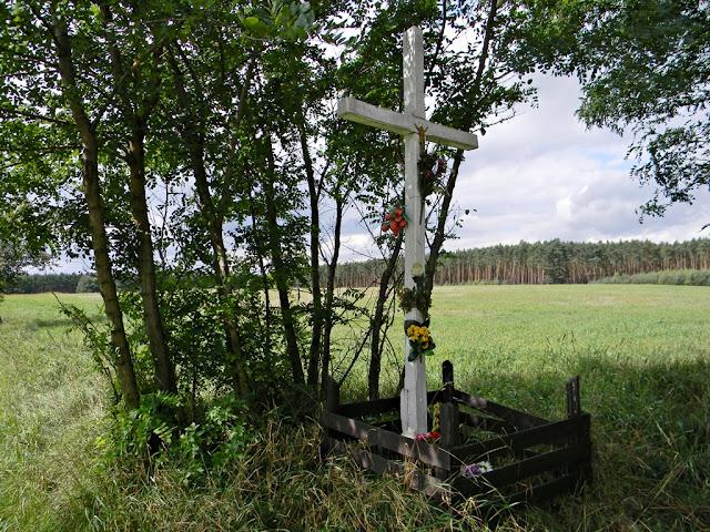 krzyż w polu, las, pola