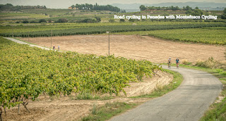 Road cycling in Penedes