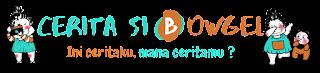 banner bowgel.com