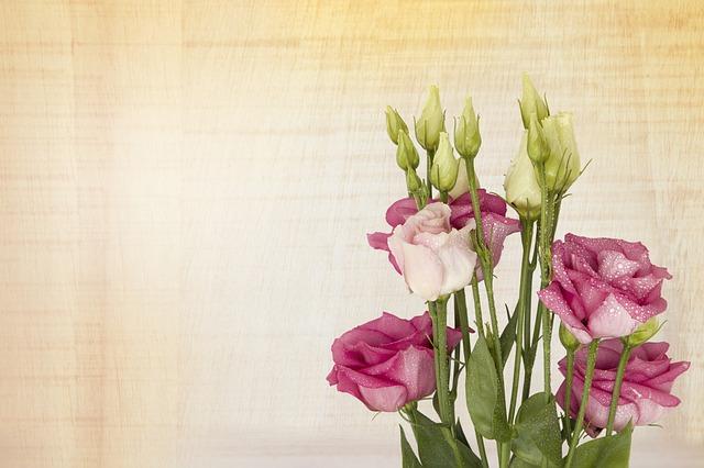 hoa lan tuong
