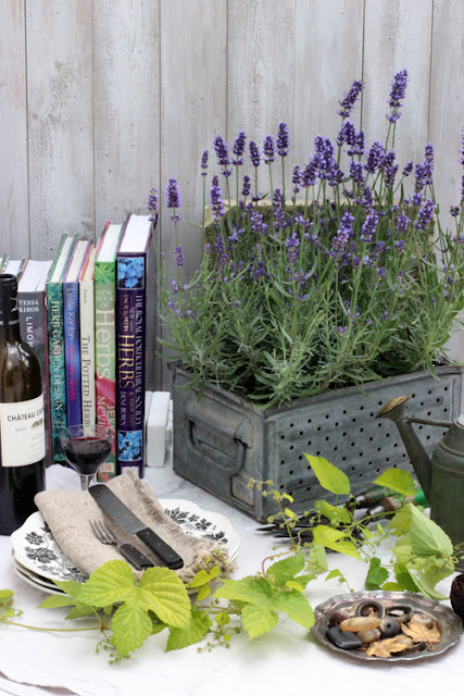 Herbs, lavender, hops