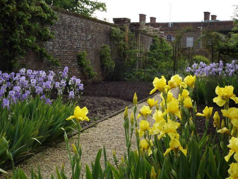jardín amurallado y lirios