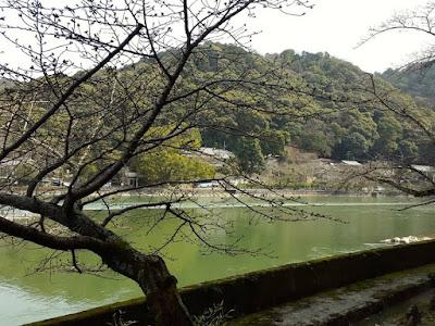 10D9N Spring Japan Trip: The Beautiful Uji River, Kyoto