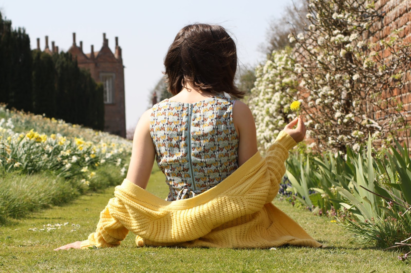 Abbey, wearing a butterfly print dress and yellow cardigan dropped off her shoulders, sits facing away from the camera amongst a row of daffodils, holding a dandelion