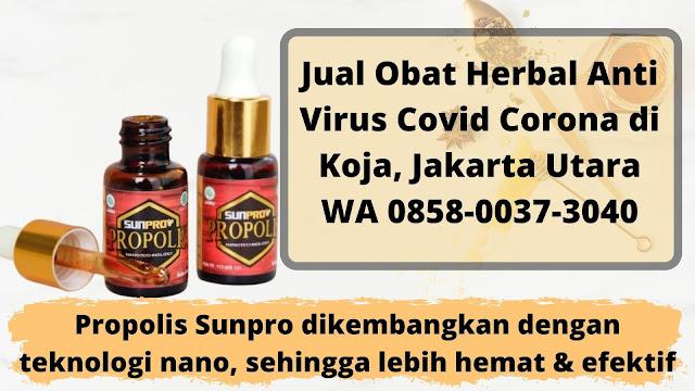 Jual Obat Herbal Anti Virus Covid Corona di Koja, Jakarta Utara WA 0858-0037-3040