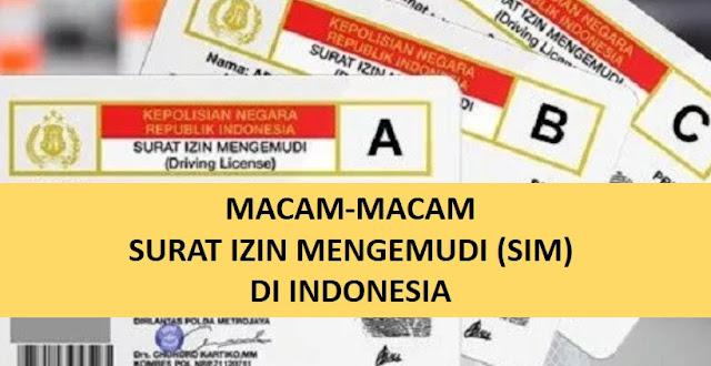 macam-macam surat izin mengemudi