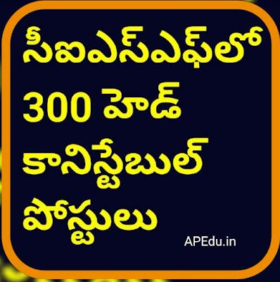 300 head constable posts in CISF
