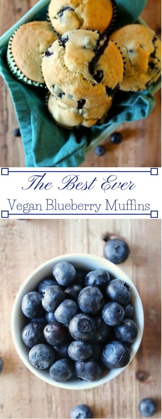 VEGAN BLUEBERRY MUFFINS #blueberry #desserts #cakes #muffins #vegan