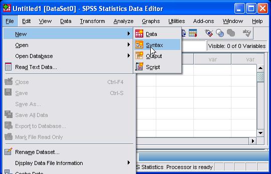 SPSS : Enter Data via Syntax Editor