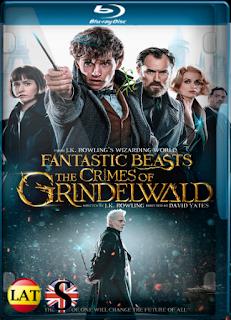 Animales Fantásticos: Los Crímenes de Grindelwald (2018) REMUX 1080P LATINO/INGLES