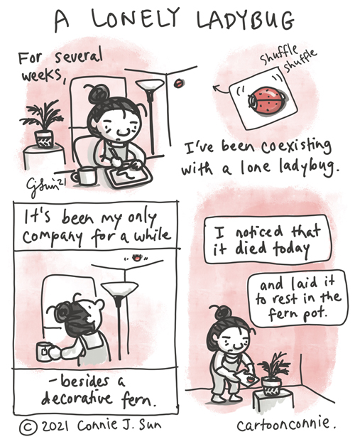 4-panel, monochrome diary comic of a girl in an apartment, coexisting with a red ladybug. She is working at her desk, while the ladybug crawls along the walls and ceiling. She comments that it's been her only company for several weeks, besides a decorative fern. In the final panel, she says that the ladybug died today and that she laid it to rest in the fern pot. Comic strip by Connie Sun, cartoonconnie