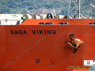 Saga Viking