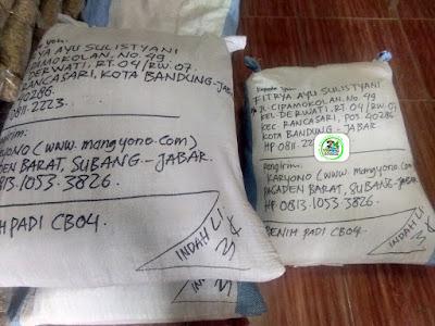 25 kg Benih Padi Pesanan   FITRYA AYU SULISTYANI Bandung, Jabar.   (Setelah di Packing).