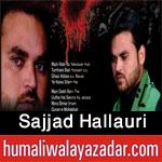 http://www.humaliwalayazadar.com/2016/09/sajjad-hallauri-nohay-2017.html