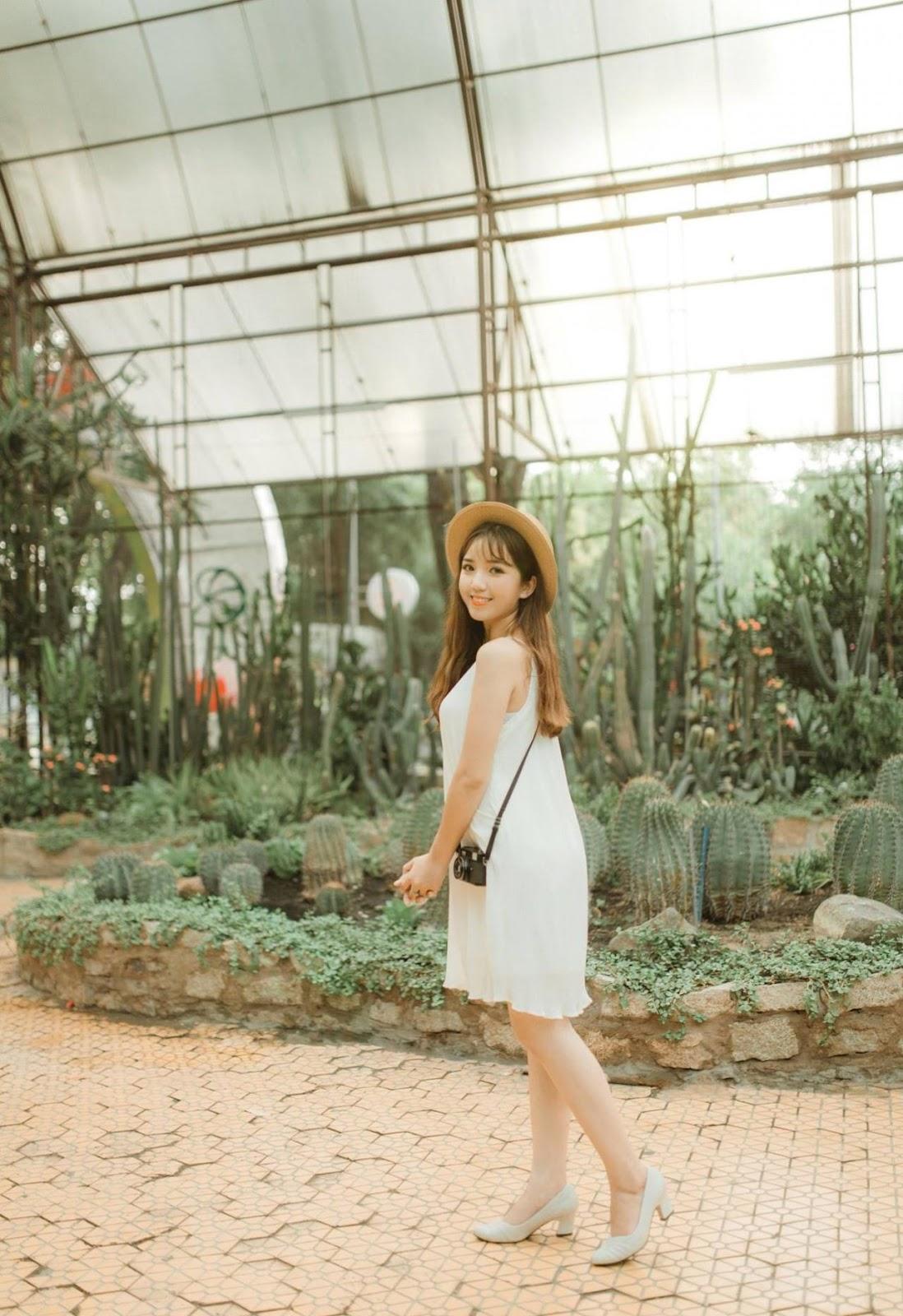 Presets Chỉnh Màu Châu Á - Girl and Cactus Lightroom Preset (LR) - Ngcloudy.com