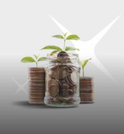 Cerdas Mengatur Keuangan dengan Teknologi Digibank by DBS