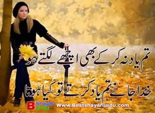 Zandgi poetry