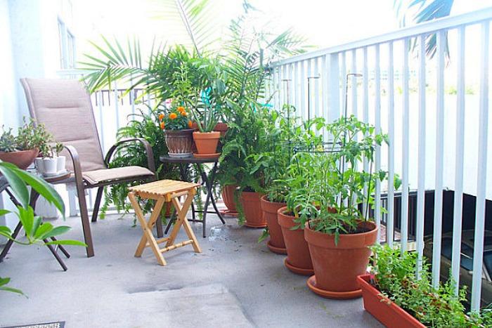 5 sencillos pasos para tener el balc n siempre bonito Como tener un lindo jardin