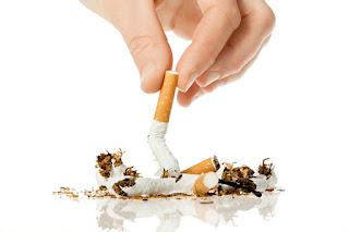 التدخين يتسبب فى مقتل سبعة اشخاص من عشرة كل يوم