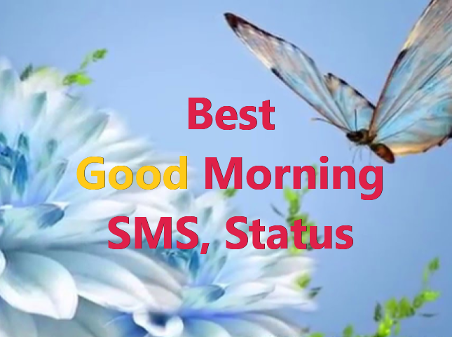 Good Morning Good Morning Messages Good Morning Status and Quotes