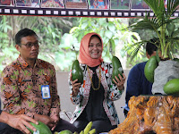 Agro Inovasi Menunjang Sektor Petanian Kabupaten Malang