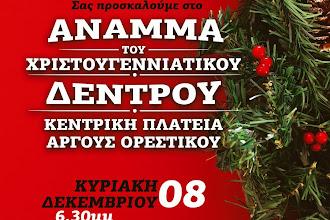 Σήμερα η φωταγώγηση του Χριστουγεννιάτικου Δένδρου στο Άργος Ορεστικό