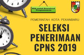 CPNS 2019 Kota Pekanbaru