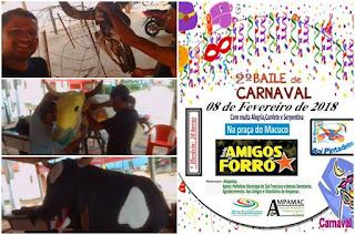 http://vnoticia.com.br/noticia/2398-boi-macuco-no-2-baile-de-carnaval-da-ampamac-nesta-quinta-feira-em-sfi