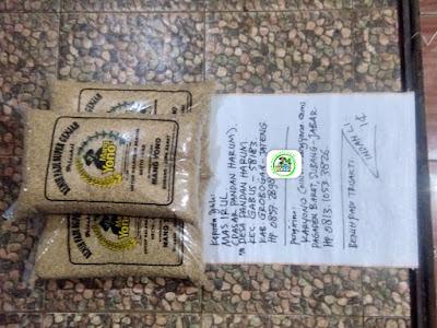 Benih padi yang dibeli MAS IRUL Grobogan, Jateng. (Sebelum packing karung ).