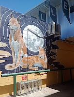 Alice Springs Street Art | Jam Ally