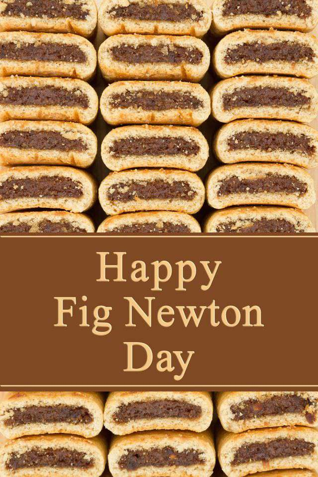 National Fig Newton Day Wishes Photos