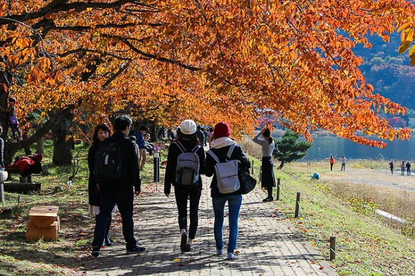 What to note when traveling to Japan in the fall?