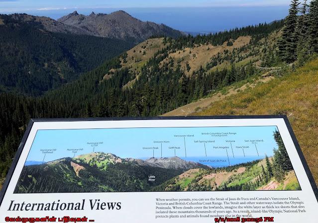 Washington Olympic National Park