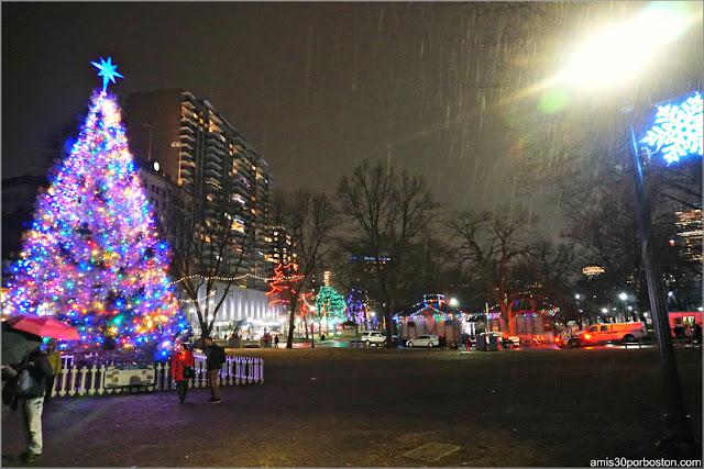 Árbol Oficial de Navidad de Boston en el Common Park