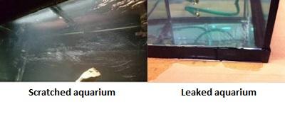 Cons of cleaning used aquarium