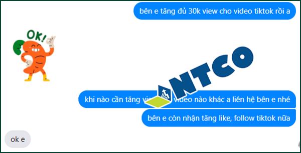 tang view tiktok