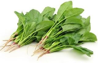 melhores-alimentos-antienvelhecimento-espinafre