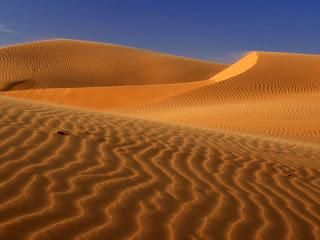 О чём поют дюны