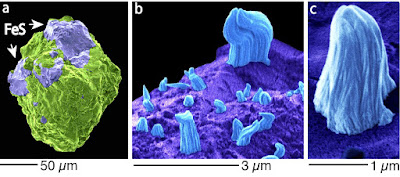 Microscopic images in false colours. (a) One of investigated Itokawa grain. The mineral troilite (FeS, violet) is surrounded by silicate minerals (green). (b) Troilite surface (violet) with iron whiskers (blue). (c) An enlarged image of an iron whisker. Image: Toru Matsumoto