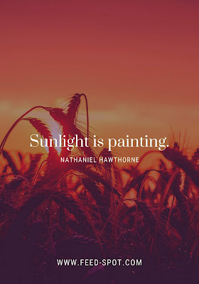Sunlight is painting. __ Nathaniel Hawthorne