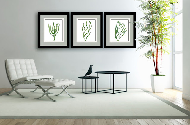 Seaweed Algae Watercolor Painting in interior artist Irina Sztukowski