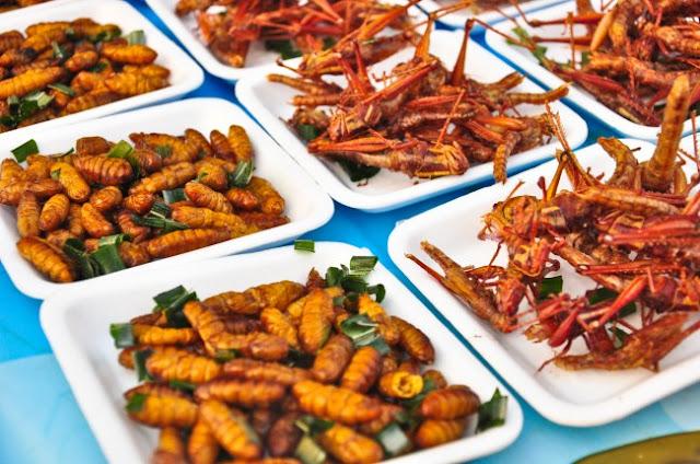 ¿Cuánto sabes sobre los insectos comestibles?