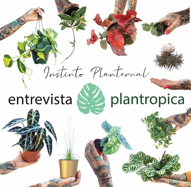 Entrevista de Plantropica a Instinto Planternal
