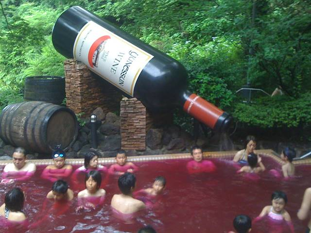 Wine spa, Hakone, Japan